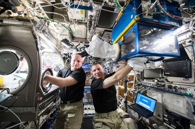 우주에서의 신체 변화를 살피기 위해 국제우주정거장(ISS)에 340일간 머문 미국 우주인 스콧 켈리(왼쪽). - 미국항공우주국(NASA) 제공